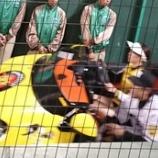『甲子園~'16.4月①阪神vs.DeNA』の画像