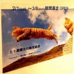 仙台プレス - 宮城県仙台市の地域情報サイト