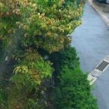 『台風の影響で大雨暴風警報発令の山梨から』の画像