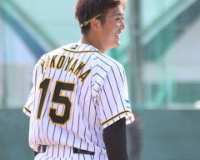 【悲報】阪神・横山雄哉投手、6月27日にブルペン入りしてから一度も登板なし