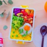 『いろんな色がきれいに見えるお弁当箱の色・タコライス弁当』の画像