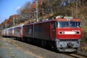 『2018/11/13運転 三陸鉄道36形甲種(東北本線、八戸線区間)』の画像