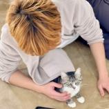 『きょうのいちまい・猫あるある「猫好きこそ嫌われる」』の画像