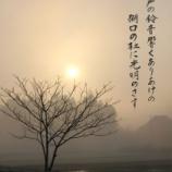 『待望の本』の画像