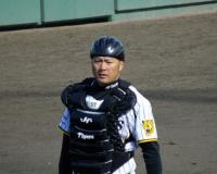 野球を舐めていた阪神岡崎さん、覚醒する