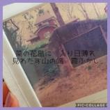 『さながら霞める朧月夜』の画像