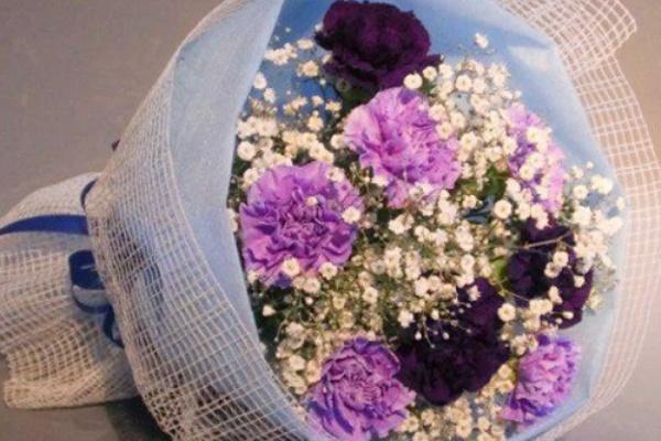 青い カーネーション の 花 言葉