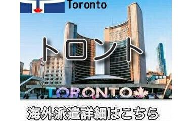 『カナダトロントインコール求人情報』の画像