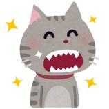 『江戸川区の健診【篠崎 ふかさわ歯科クリニック】』の画像