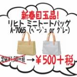 『新春目玉品!リヒトのミニトートが定価の77%OFFで数量限定発売中だ~よ。』の画像