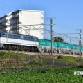 10/14 夕方の米タン8079レ【EF65 2138】