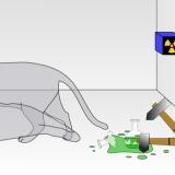 シュレーディンガーさん、「猫の生死の状態が重なっている」と主張したと勘違いされてしまう