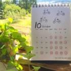 『🍁🎨 10月のサロン🏡営業日 🎨🍁』の画像