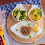 『プチプラのお皿ランチ・そぼろくま』の画像
