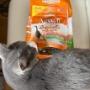 猫フードを食べるよりも好きなこと!?