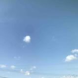 『今日も風が強いです!』の画像