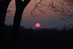 きれいな夕焼けがみたい!夕焼けを見に山道を登ってみたらビューティフルサンセット!