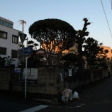 『静岡>駐車場になった家』の画像