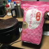『飯盒で玄米飯』の画像