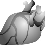 『心臓には「がん」ができにくい』の画像