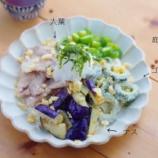 『夏野菜たっぷりのソーメンランチとゴーヤのおいしい食べ方』の画像
