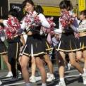 第17回湘南台ファンタジア2015 その39(明治學院大学應援團部)