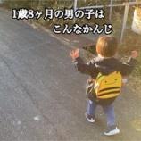 『1歳8ヶ月の男の子ってこんな感じ』の画像
