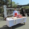 第54回鎌倉まつり2012 その25(ミス鎌倉2011&2012広場での撮影会)