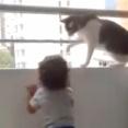 いつもそばには守護天使。小さな子どもを見守ってくれる猫の存在は貴重。海外の反応