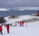 【爆壊】南極に中国人殺到し環境破壊 「ペンギンに触れないで」という注意も無視