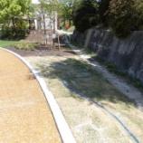 『芝生の水やり(4/21)』の画像