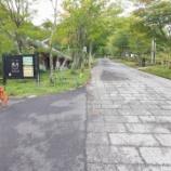 『長野に3泊でキャンプに行った話。【浪合パーク】【星景撮影】【PENTAX DFA15-30】』の画像