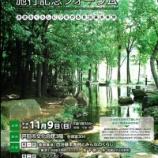 『戸田市自治基本条例施行記念フォーラム、明日開催です』の画像