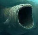 この画像見て怖いと感じた奴は海洋恐怖症らしい