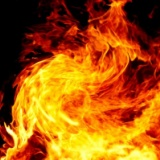【画像】イッヌさん、自分から焼かれにいってしまうwwwwwwwwwww