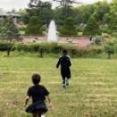 一瞬の植物園