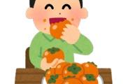 オトナになって初めてわかる美味い果物って