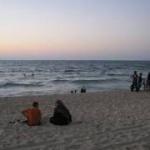 ガザの海岸に数百匹のエイが打ち上げられる