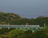 『伊豆急行線川奈の鉄橋の13年』の画像