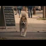 『『HACHI 約束の犬』』の画像