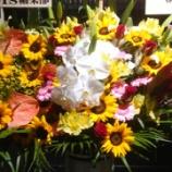 『【乃木坂46】W伊藤へ贈られた祝花・・・これは泣ける・・・』の画像