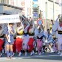第17回湘南台ファンタジア2015 その50(神奈川大和阿波踊り振興協会)