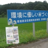 『 兵庫県 養父市に行って来ました』の画像