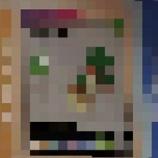 『【ポケモン剣盾】フラゲ情報 ヒバニーの進化形か?ワンパチの進化形や、インプくん(ベロバー)の進化形も!』の画像
