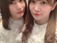 【日向坂46】しほなお姉妹が仲良くしてるのほんま好き。
