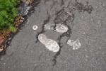 なるほど!『謎の白い足跡』はそーいうことだったのか!~磐船神社のとこにあった白い足跡はスポレクのところにもある!~【情報提供:モーリーさん】