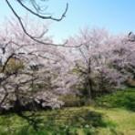 春夏秋冬~東北の山巡り~