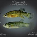『致死量の8000倍に耐える魚と毒の効かない聖者』の画像
