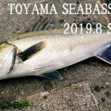『2019.8.TOYAMA SEABASS GAME』の画像