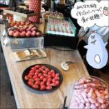 『いちごスイーツ食べ放題!ホテルビュッフェデート』の画像